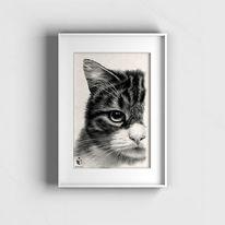 Tierportrait, Sketchus, Tiere malen lassen, Zeichnungen