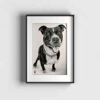 Tierportrait, Portraitzeichnung, Tiere, Zeichnungen