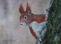 Eichhörnchen, Tiere, Gouachemalerei, Malerei