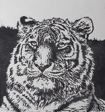 Katze, Tiere, Linolschnitt, Tiger