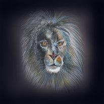 Löwe, Handzeichnung, König der tiere, Illustration