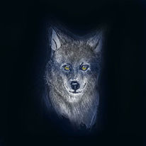 Illustration, Tierzeichnung, Finart, Buntstiftzeichnung