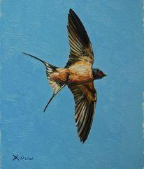 Blau, Malerei, Ölmalerei, Fliegen