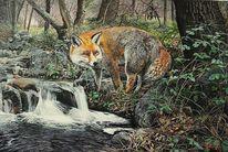 Tierwelt, Acrylmalerei, Fuchs, Malerei