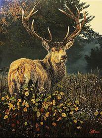 Hirsch, Tiere, Acrylmalerei, Malerei