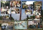 Kinder bei zebra 1998-2003 auf der Europatour