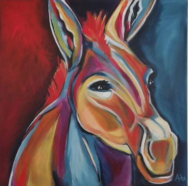 Esel, Tierportrait, Bunt, Frech, Warm, Portrait