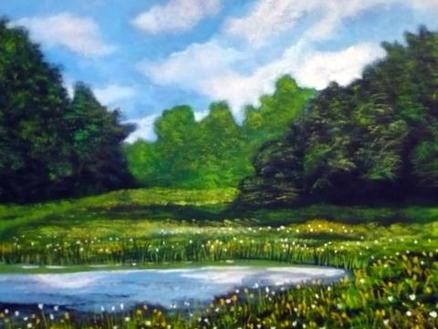 Sommer, Westerwald, Teich, Malerei, Landschaft