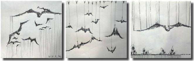 Schwarz weiß, Vogelkollektion, Skizze, Rabe, Vogel, Zeichnungen