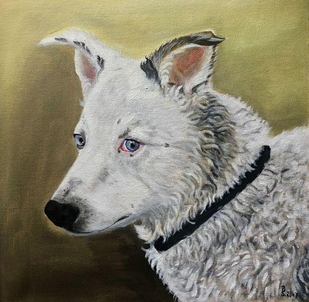 Portrait, Acrylmalerei, Vierbeiner, Fell, Hund, Handarbeit