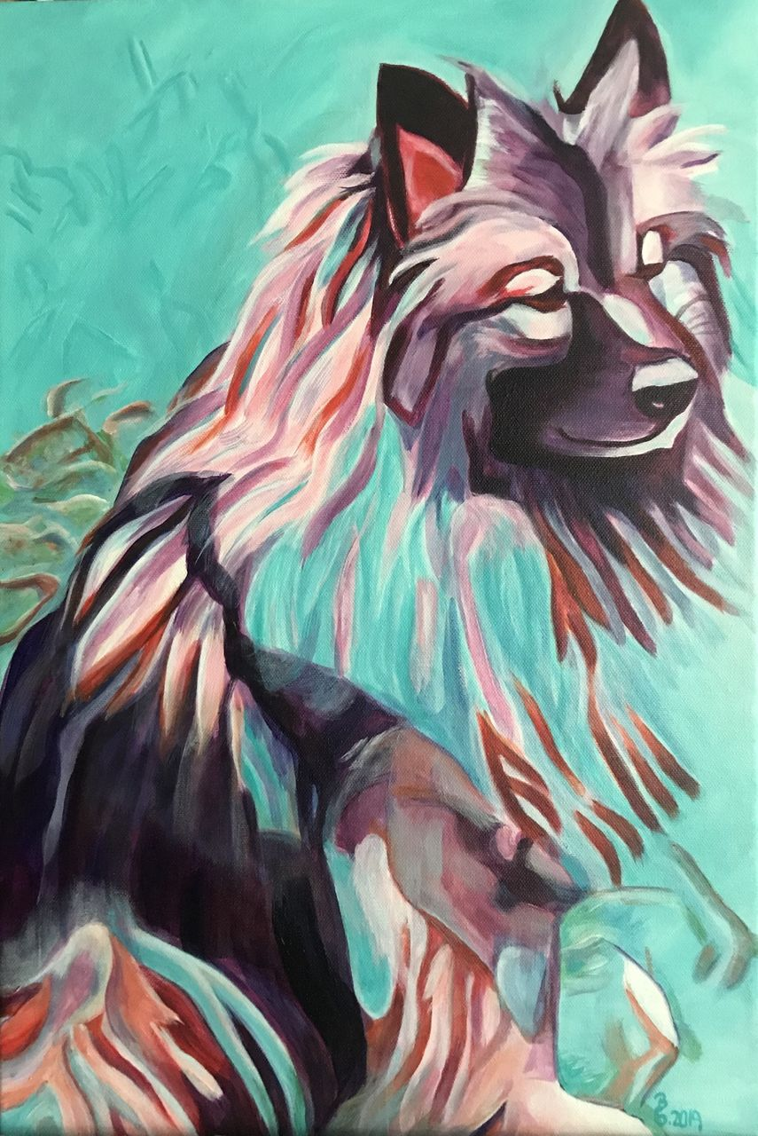 Wo Ist Der Wurm Nutztiere Expressionismus Acrylmalerei Tiere