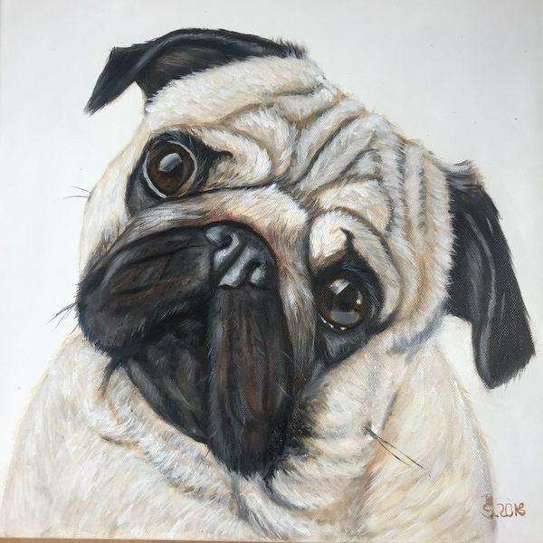 Malerei, Handarbeit, Tiere, Hund, Fell, Mops