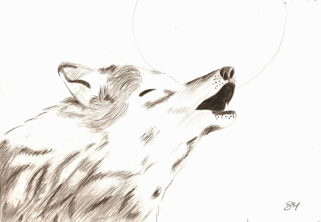 Bild: Wolf, Heulen, Mond, Tiere von Sammy bei KunstNet