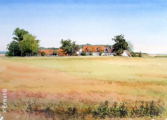 Donaumoos, Herbst, Hönighausen, Ernte, Aquarell