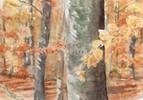 Herbst, Blätter, Wald, Malerei