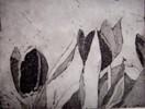 Blumen, Halabstrakt, Grafik, Pflanzen