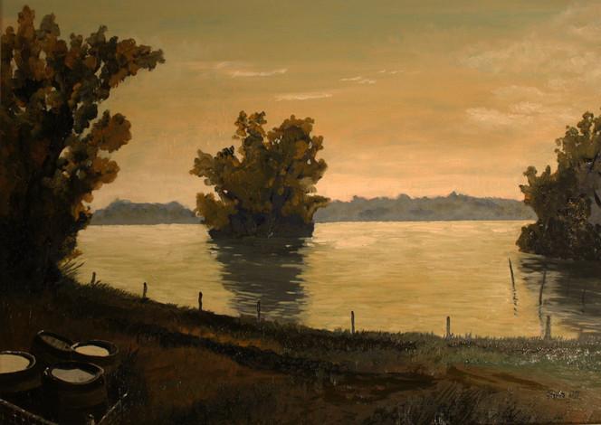 Landschaft, Natur, Baum, Fass, See, Gegenlicht