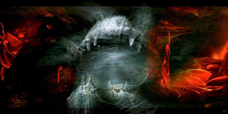 Wirkung, Feuer, Schatten, Unbewusst, Außen, Ego