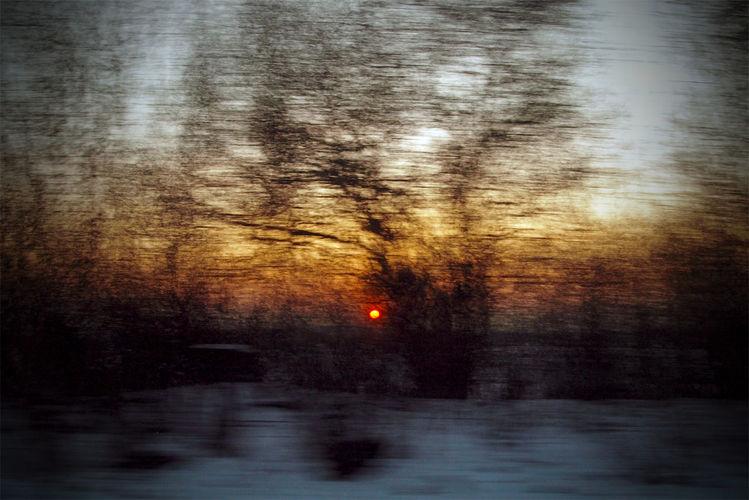 Winter, Baum, Busch, Himmel, Geschwindigkeit, Äste
