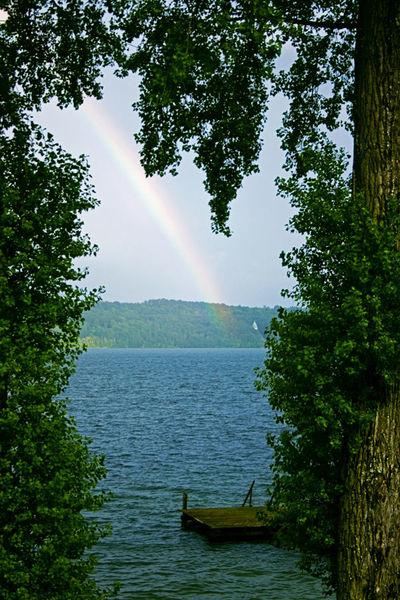Blätter, Holz, See, Baum, Regen, Regenbogen