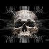Schädel, Wahrnehmung, Geist, Schatten