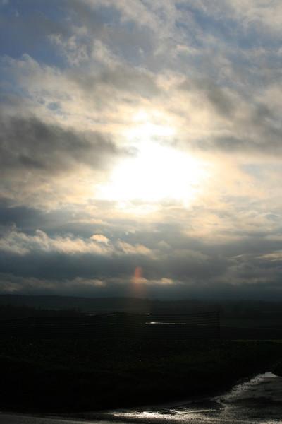 Baum, Windfang, Wolken, Feld, Himmel, Weg