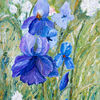 Blau, Blumen, Frühling, Schwertlilien