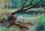 Heiming, Pastellmalerei, Rott, Wasser