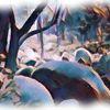 Staunen, Granit, Labyrinth, Landschaft