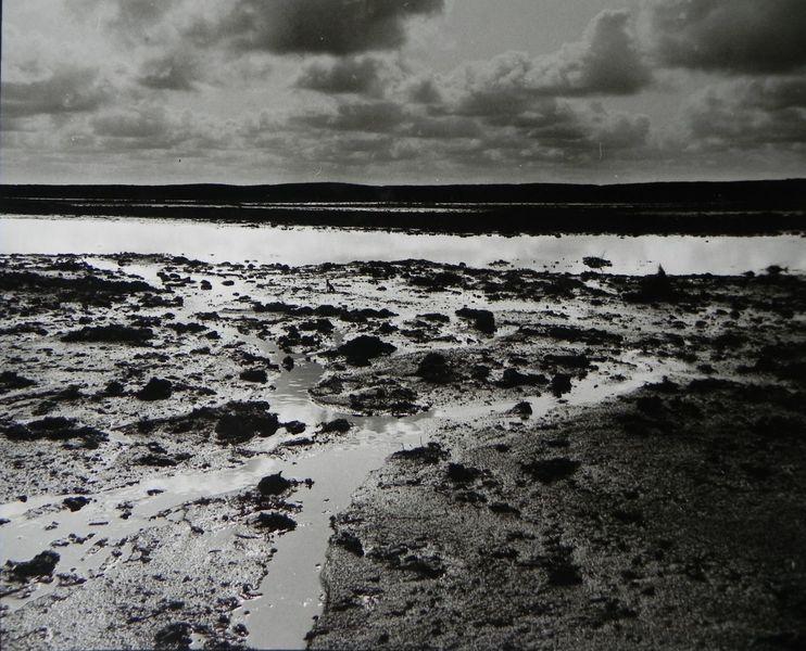Wasser, Wolken, Weite, Moor, Fotografie
