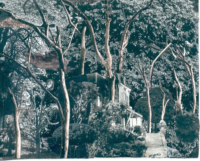 Baum, Haus, Park, Wald, Fotografie, Surreal