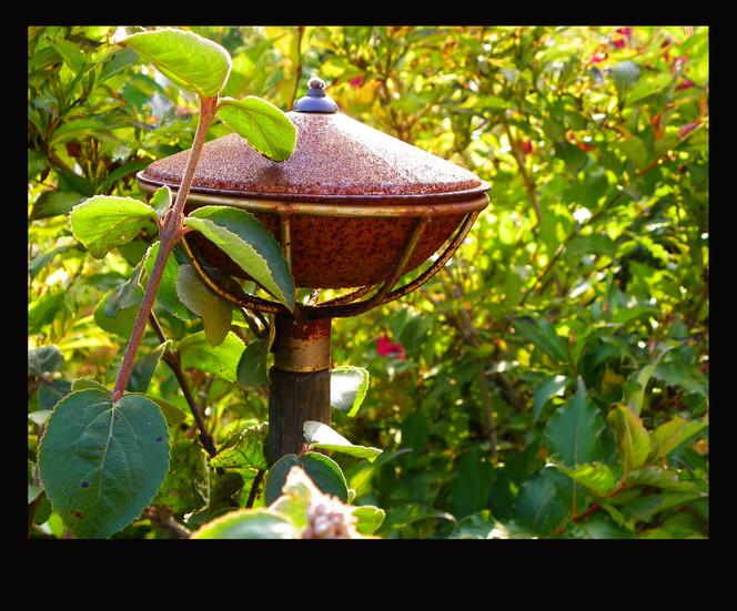 Grün, Öllampe, Herbst, Alt, Rostig, Fotografie