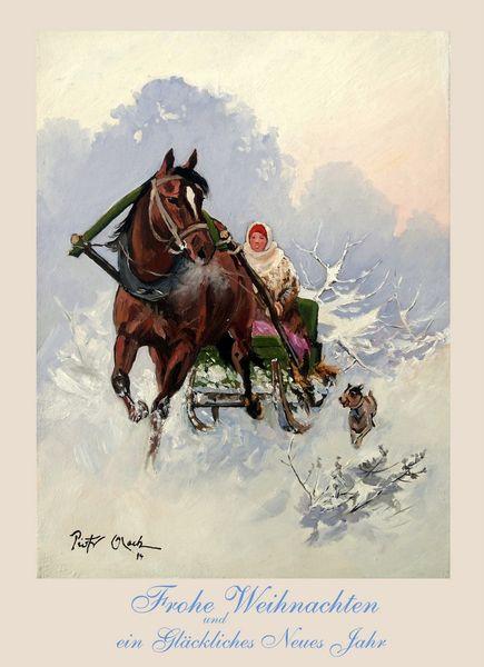 Schlitten, Schlittenfahrt, Winter, Frau, Schnee, Pferde