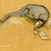 Schlaf, Traum, Belastung, Zeichnungen