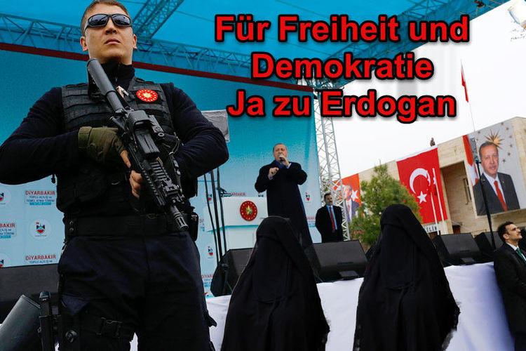 2017, Referendum türkei, Satire, Ried im innkreis, Burka, Dietmar fuessel