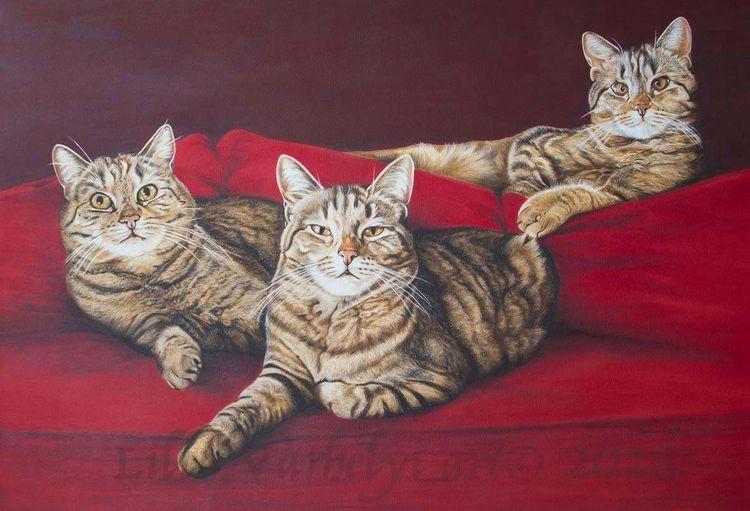 Katze, Sofa, Rot, Tiermalerei, Tiere, Ölmalerei