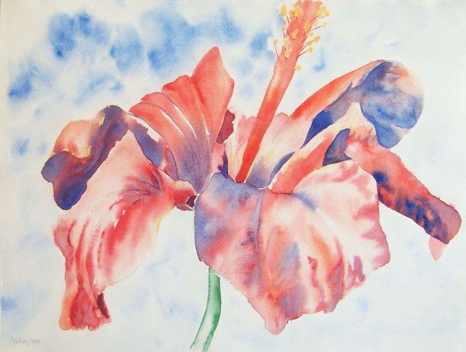 Blumen, Licht, Aquarellmalerei, Lasurtechnik, Blüte, Stängel