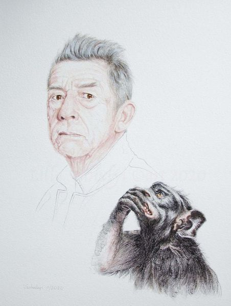 Tuschmalerei, Menschen, Mann, John hurt, Gesicht, Affe