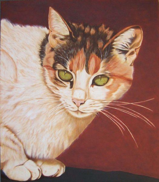 Realistische malerei, Katze, Tierportrait, Katzenportrait, Katzenaugen, Augen