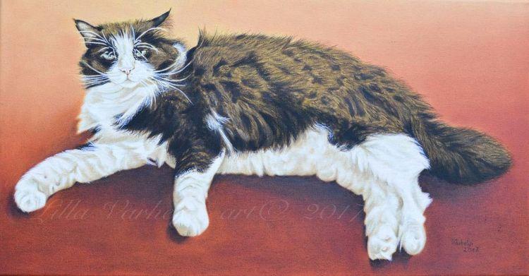 Schichtenmalerei, Katze, Harzölmalerei, Langhaar, Maincoon, Realismus