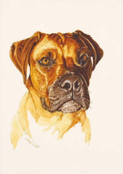 Tuschmalerei, Tiere, Hund, Hundeportrait, Zeichnungen