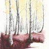 Sonne, Tuschmalerei, Birken, Baum