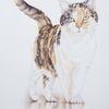 Tuschmalerei, Glückskatze, Tierzeichnung, Tierportrait