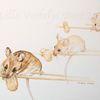 Tierzeichnung, Tuschmalerei, Geschichte, Maus