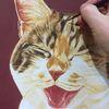 Realismus, Katze, Tierportrait, Lachen
