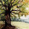 Natur, Sonne, Landschaft, Baum