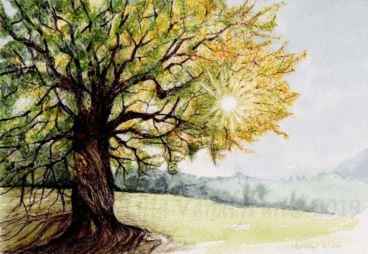 Baum, Tusche, Fantasie, Licht, Natur, Sonne