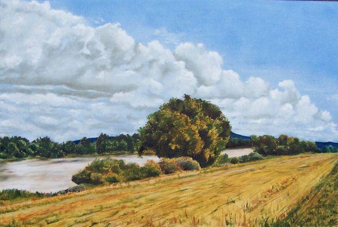 Sommer, Wiese, Flusslandschaft, Fluss, Spätsommerliche, Realistische malerei