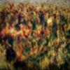Geheimnis, Herbst, Menschen, Tanz