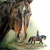 Pferdeportrait, Pferdezeichnung, Pferde, Zeichnungen